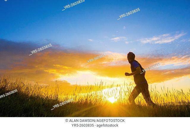 Mature man running in wildflower meadow at sunrise. Billingham, north east England, United Kingdom