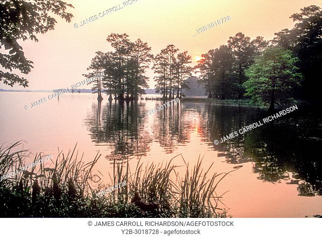 Sunrise at Reelfoot Lake in Tennessee