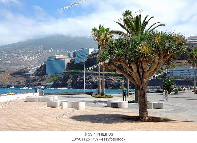 Puerto de la Cruz promenade. Canary Island Tenerife, Spain