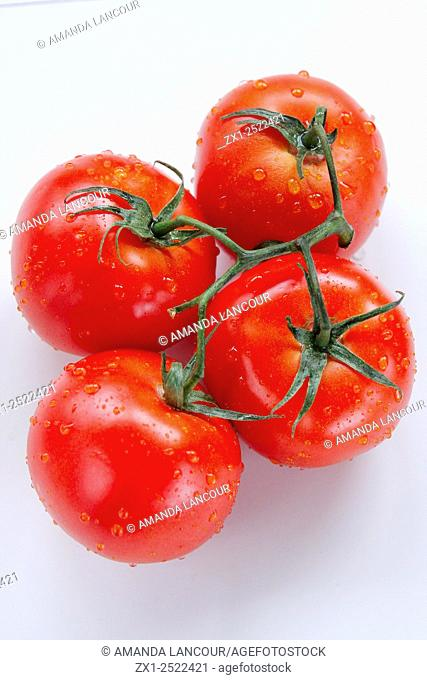 Vined, ripe tomatoes, dew drops, shot from above on white