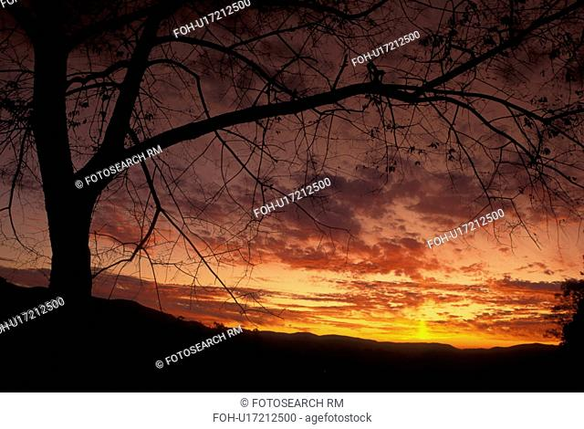 TN, Tennessee, Great Smoky Mountains National Park, Cades Cove, sunset