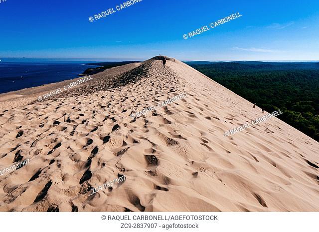 Dune de Pilat, Europe's tallest sand dune nestled between the Atlantic Ocean, an enormous pine forest, the Arcachon Bay, a sandbank and a peninsula, Arcachon