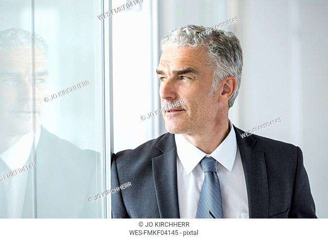 Mature businessman in office, portrait
