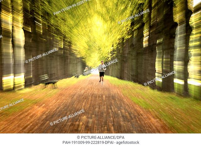 09 October 2019, Lower Saxony, Hanover: A jogger walks through the Herrenhäuser Allee. Photo: Sina Schuldt/dpa. - Hanover/Lower Saxony/Germany