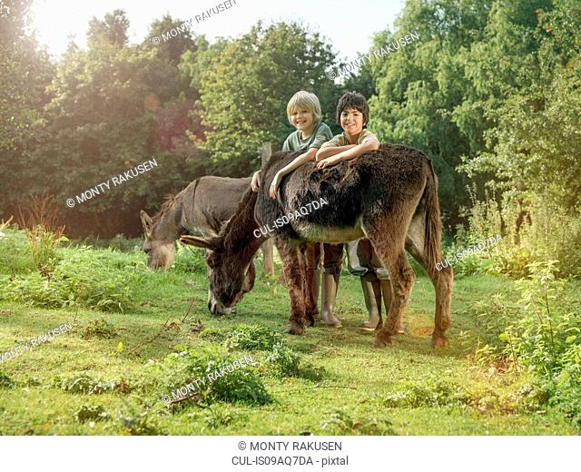 Two boys with donkey in field, portrait