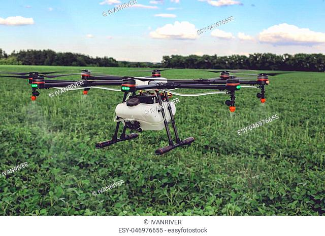 Agriculture drone fly to sprayed fertilizer on the green fields. drone flying with blue sky