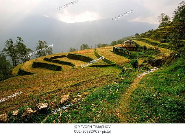 ABC trek (Annapurna Base Camp trek), Nepal