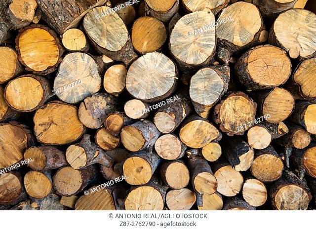 Pine logs, firewood. Almansa, Albacete province, Castilla-La Mancha, Spain