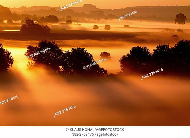 Beautiful landscape in golden light. Sunrise in the riparian zones of the Woernitz river in fog - Hesselberg region, Bavaria/Germany