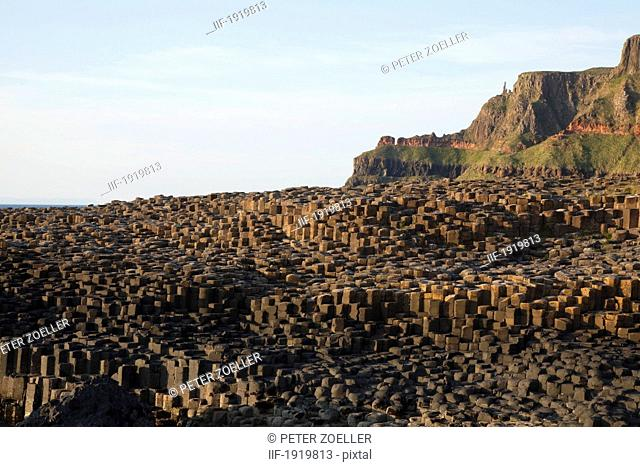 Natural Basalt Column Rock Formations, Giant'S Causeway, County Antrim, Northern Ireland