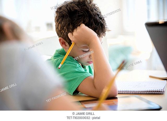 Boy (8-9) concentrating on homework