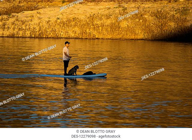 Stand up paddle boarding on tranquil Lake Pleasant; Arizona, United States of America