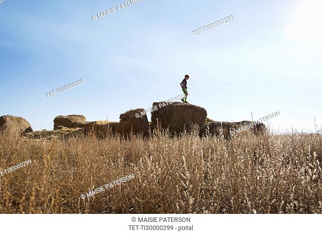 Boy (6-7) standing on bale of hay