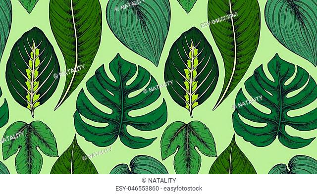 Vector seamless pattern with compositions of hand drawn tropical palm leaves, jungle plants. Beautiful colorful natural endless background