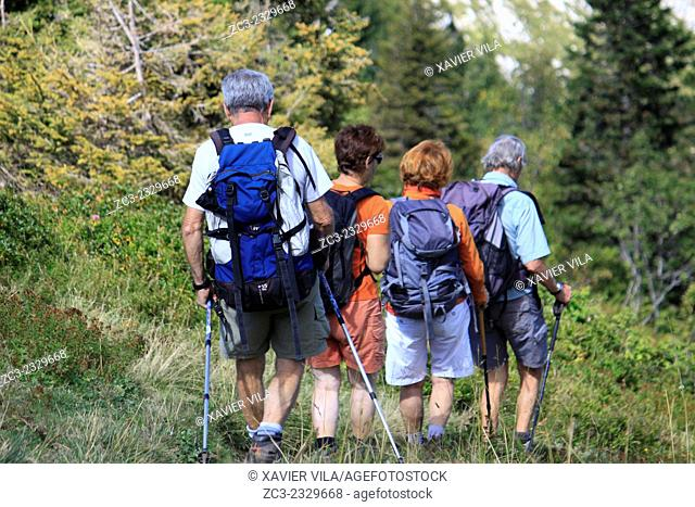 Trek to the Petit Som, Chartreuse, mountain, Alps, Isere, Rhone Alpes, France