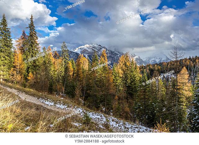 Valle d'Ampezzo, Cortina D'Ampezzo, Province of Belluno, region of Veneto, Italy, Europe