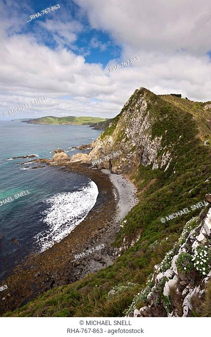 Nugget Point, Otago, South Island, New Zealand, Pacific