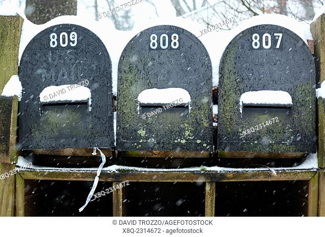 Snow covered postal boxes