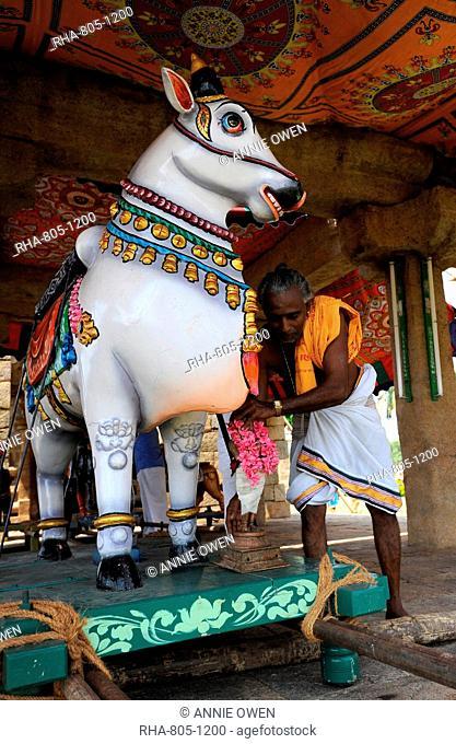 Holy man dressing temple Nandi bull for temple ceremony, Gangaikonda Cholapuram temple, Ariyalur district, Tamil Nadu, India, Asia