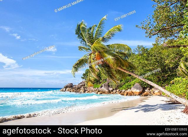 Seychelles Anse Georgette beach Praslin island palm vacation paradise ocean sea water