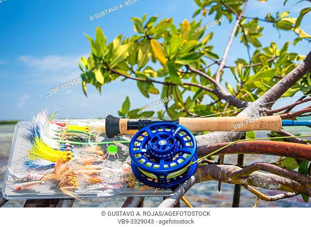 saltwater fly fishing rod in mangrove -Caribbean sea- los roques venezuela
