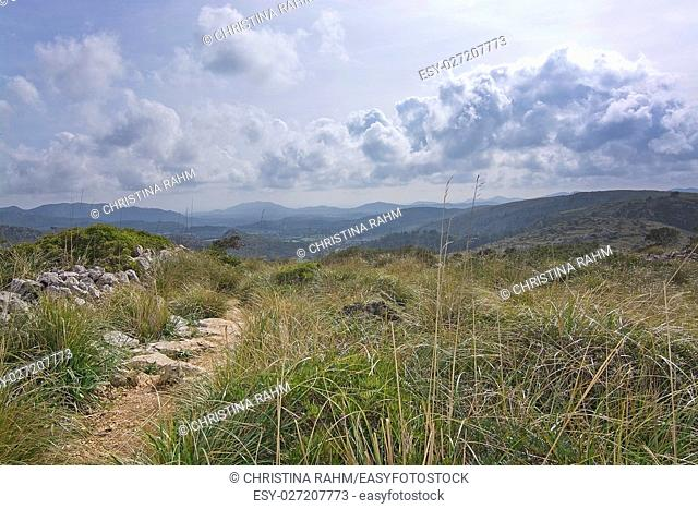 Green spring mountain landscape in Mallorca, Balearic islands, Spain