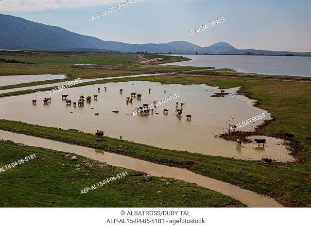 Dalton Reservoir