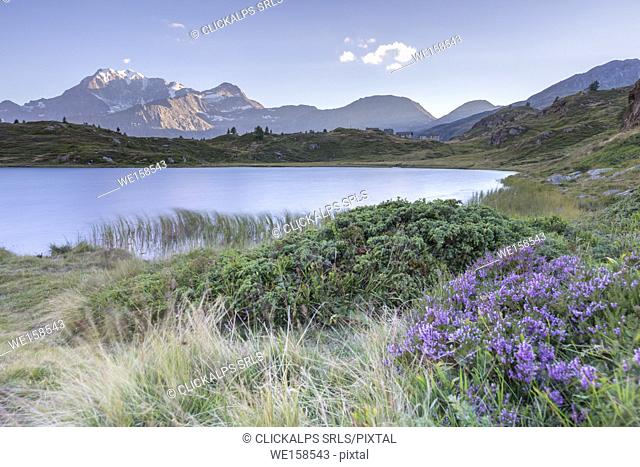 The Hopschusee lake at the top of the Simplon pass and the Fletschhorn at sunset, Simplonpass, Vallis, Switzerland