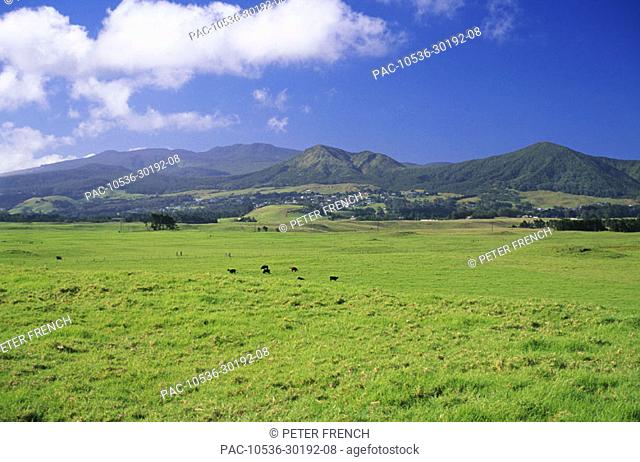 Hawaii, Big Island, Waimea, view of Kohala Mountain from Mana Road