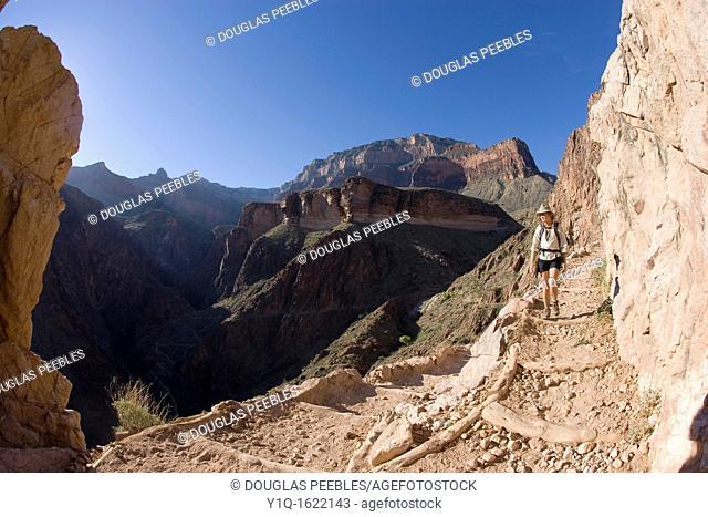 Angel Bright Trail, Grand Canyon National Park, Arizona, USA
