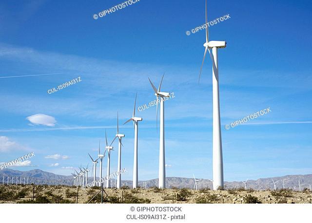 Wind turbines, San Gorgonio Pass Wind Farm, Palm Springs, California, USA