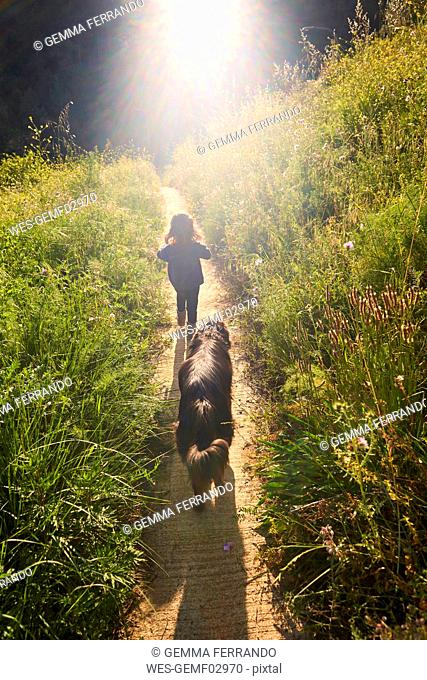 Back view of toddler girl walking with dog in nature