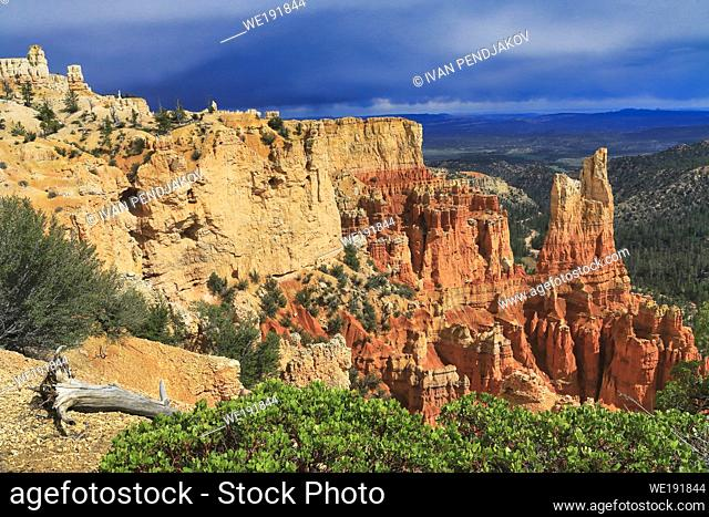 Paria View, Bryce Canyon National Park, Utah, USA