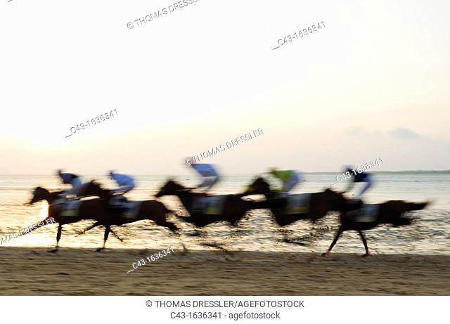 Spain - The famous horse races of Sanlucar de Barrameda take place every year during August along a 1 800m stretch of beach at the mouth of the River...