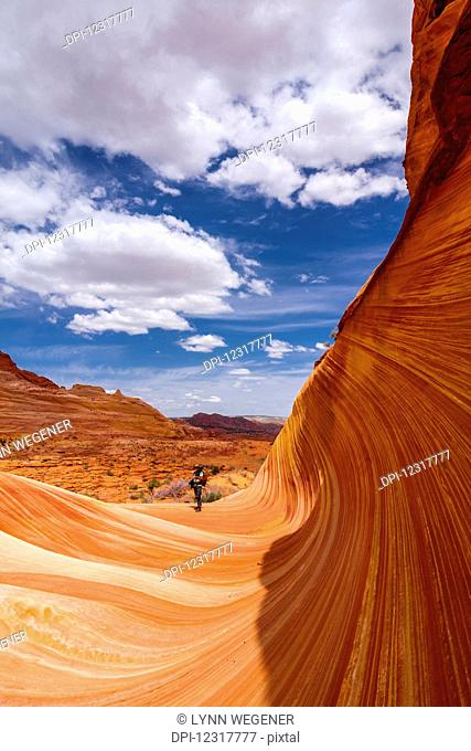 View of a hiker in the sandstone formation known as the Wave, Vermillion Cliffs; Arizona, United States of America