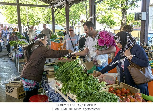 France, Puy de Dome, Clermont Ferrand, Montferrand district, market day