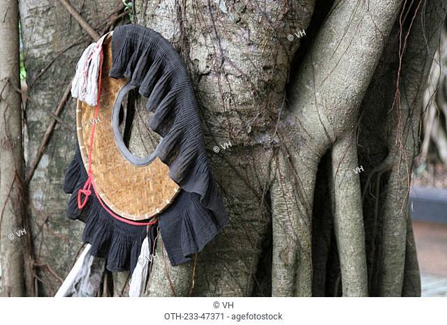 A Hakka people hat hanging on a tree at Sheung Woo Hang village, Sha Tau Kok, Hong Kong
