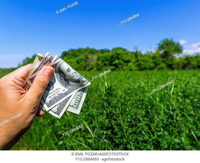 Nature natural environment and dollars dollar money dollars in hand country
