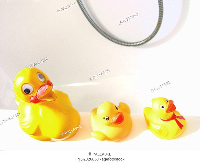 High angle view of rubber ducks