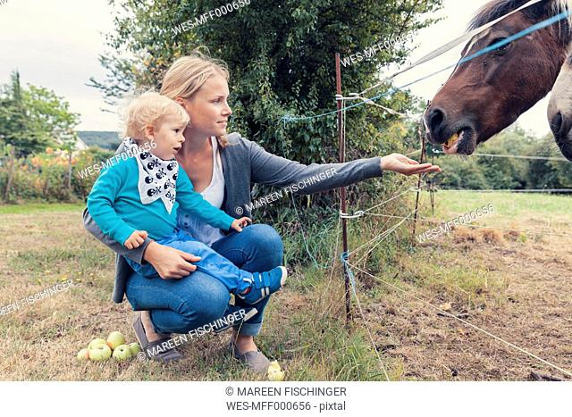 Mother and son feeding a horse with apples