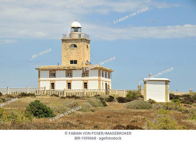 Lighthouse on Tabarca island, Alicante province, Costa Blanca, Spain, Europe