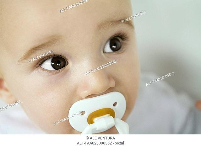 Baby with pacifier in mouth, raising eyebrows, close-up