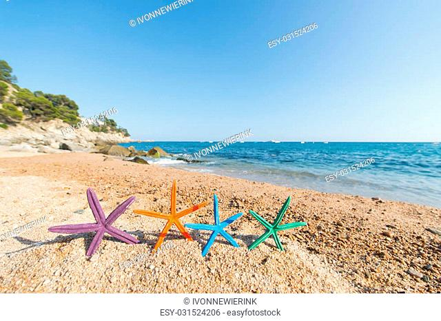 Standing row colorful starfish at the beach