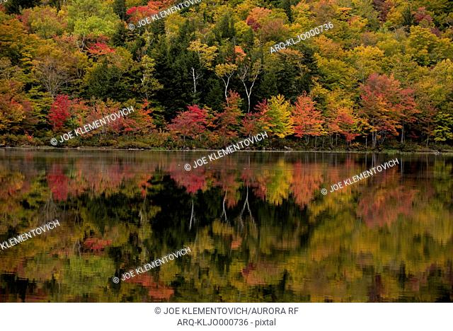 Fall foilage reflected on a pond in New Hampshire