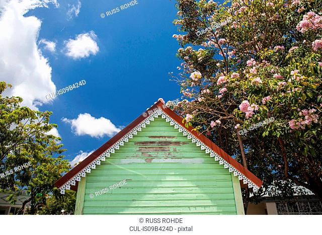 Low angle view of green hut and blossoming tree, Reunion Island