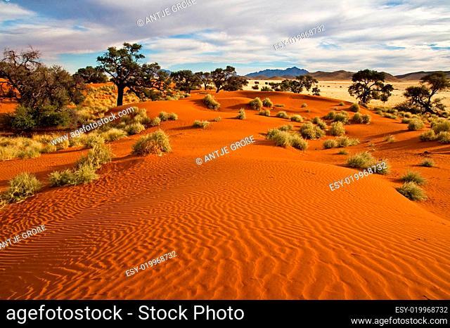 Dünen im Namibrand