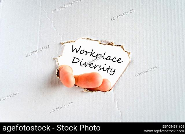 Workplace diversity text concept isolated over white background