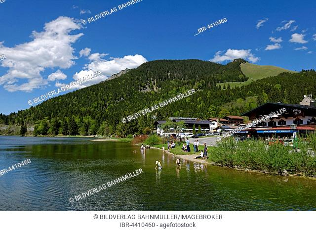 Lake Spitzingsee, small beach, Upper Bavaria, Bavaria, Germany