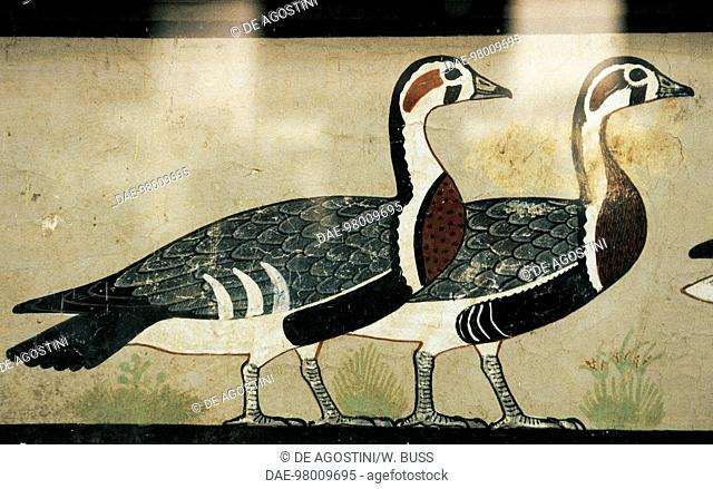 Red-breasted Geese, detail of The Meidum Geese, wall painting from Itet and Nefermaat's mastaba, Meidum, Egypt. Egyptian civilization, Ancient Kingdom