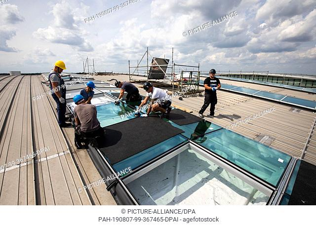 06 August 2019, Hamburg: Workers are installing new glass elements and roof windows in the so-called light strips of the roof of Terminal 2 at Hamburg Airport
